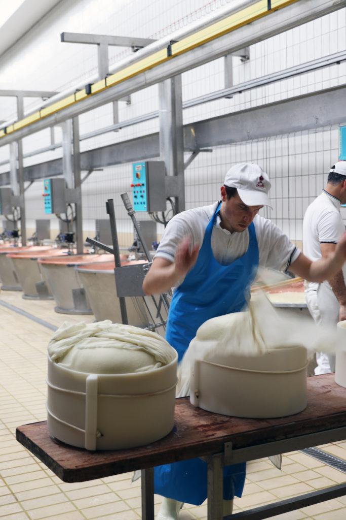 italy parmigiano reggiano milk cheese making italy